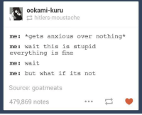 Stupidity: ookami-kuru  hitlers moustache  me: gets anxious over nothing  me: wait this is stupid  everything is fine  me wait  me: but what if its not  Source: goatmeats  479,869 notes