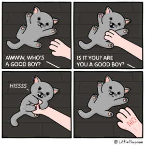 Good Kitty: ooo  AWWW,WHO'S  A GOOD BOY?  IS IT YOU? ARE  YOU A GOOD BOY?  HISSSS  NO  OLittle Porpoise Good Kitty