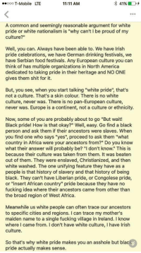 "Africa, America, and Drinking: ooo T-Mobile LTE  11:11 AM  4196 D +  A common and seemingly reasonable argument for white  pride or white nationalism is ""why can't I be proud of my  culture?""  Well, you can. Always have been able to. We have Irish  pride celebrations, we have German drinking festivals, we  have Serbian food festivals. Any European culture you can  think of has multiple organizations in North America  dedicated to taking pride in their heritage and NO ONE  gives them shit for it.  But, you see, when you start talking ""white pride, that's  not a culture. That's a skin colour. There is no white  culture, never was. There is no pan-European culture,  never was. Europe is a continent, not a culture or ethnicity.  Now, some of you are probably about to go ""But wait!  Black pride! How is that okay?"" Well, easy. Go find a black  person and ask them if their ancestors were slaves. When  you find one who says ""yes"", proceed to ask them ""what  country in Africa were your ancestors from?"" Do you know  what their answer will probably be? ""I don't know."" This is  because their culture was taken from them. It was beaten  out of them. They were enslaved, Christianized, and then  white washed. The one unifying feature they have as a  people is that history of slavery and that history of being  black. They can't have Liberian pride, or Congolese pride,  or ""insert African country"" pride because they have no  fucking idea where their ancestors came from other than  the broad region of West Africa  Meanwhile us white people can often trace our ancestors  to specific cities and regions. I can trace my mother's  maiden name to a single fucking village in Ireland. I know  where I came from. I don't have white culture, I have Irish  culture.  So that's why white pride makes you an asshole but black  pride actually makes sense. lynati:Unsourced screencap making the rounds on Facebook."
