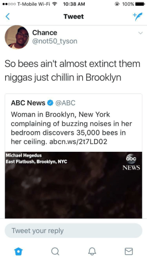 Abc, Anaconda, and New York: ooo T-Mobile Wi-Fi  10:38 AM  100%  Tweet  Chance  @not50 tyson  So bees ain't almost extinct them  niggas just chillin in Brooklyn  ABC News@ABC  Woman in Brooklyn, New York  complaining of buzzing noises in her  bedroom discovers 35,000 bees in  her ceiling. abcn.ws/2t7LDO2  Michael Hegedus  East Flatbush, Brooklyn, NYC  NEWS  Tweet your reply Save the bees!