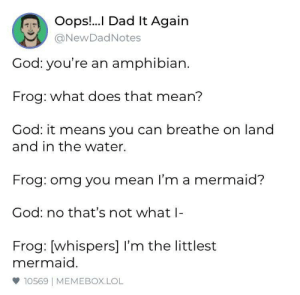 Dad, God, and Lol: Oops.!.. Dad It Again  @NewDadNotes  God: you're an amphibian.  Frog: what does that mean?  God: it means you can breathe on land  and in the water  Frog: omg you mean I'm a mermaid?  God: no that's not what  Frog: [whispers] l'm the littlest  mermaid.  φ 10569 | MEMEBOX.LOL Let the frog dream