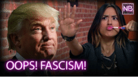 Memes, Forever, and Trump: OOPS! FASCISM!  NIR Is Trump a fascist? The answer will make you barf forever.