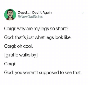 My Legs: Oops!...I Dad It Again  @NewDadNotes  Corgi: why are my legs so short?  God: that's just what legs look like.  Corgi: oh cool.  [giraffe walks by]  Corgi:  God: you weren't supposed to see that.