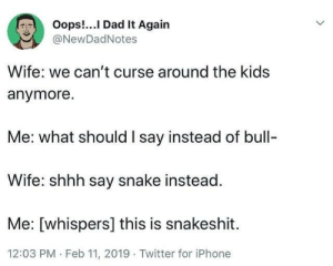 Dad, Dank, and Iphone: Oops!...I Dad It Again  @NewDadNotes  Wife: we can't curse around the kids  anymore.  Me: what should I say instead of bull-  Wife: shhh say snake instead.  Me: [whispers] this is snakeshit  12:03 PM Feb 11, 2019 Twitter for iPhone