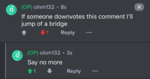 Say No More, Bridge, and Comment: (OP) olleh132 8s  If someone downvotes this comment I'll  jump of a bridge  Reply  (OP) olleh132 3s  Say no more  1  Reply  X Say no more