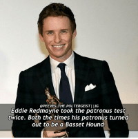 Q-what is your patronus? Check out my other acc @fictionandmore|| tag a friend! harrypotter potterhead fantasticbeasts fantasticbeastsandwheretofindthem: OPEEVES THE POLTERGEISTI IG  Eddie Redmayne took the patronus test  twice. Both the times his patronus turned  out to be a Basset Hound Q-what is your patronus? Check out my other acc @fictionandmore|| tag a friend! harrypotter potterhead fantasticbeasts fantasticbeastsandwheretofindthem