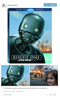 rogue-one: Open in tumblr.  waltzkatzenblut  BLU-RAY DVD DIGITAL HD  ROGUE ONE  A STAR WARS STORY  The Walmart exclusive rogue one cover reminded me of something  #rogue one #k2so #Star Wars  22,445 notes