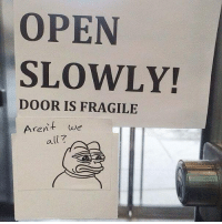 Memes, Shit, and Boost: OPEN  SLOWLY!  DOOR IS FRAGILE  Arent we  all? hhhh my sarahah link is in my bio send me shit to boost my ego 😎👍😜😝(im jk)