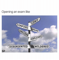 Confused, Time, and Like: Opening an exam like  CONFUSED  NSURE  PERPLEXED  DISORIENTED BEWILDERED  SP Every time 😂