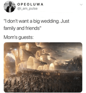 "Brings all the family members and friends. by Master1718 MORE MEMES: OPEOLUWA  @i_am_pulse  ""I don't want a big wedding. Just  family and friends""  Mom's guests: Brings all the family members and friends. by Master1718 MORE MEMES"