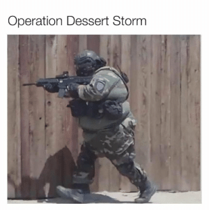 Funny, Dessert, and Storm: Operation Dessert Storm Meal Team Six. https://t.co/r9YIHwJZED