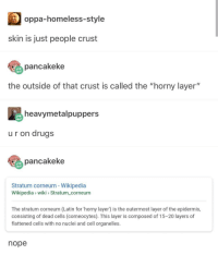 "Drugs, Homeless, and Horny: oppa-homeless-style  skin is just people crust  pancakeke  the outside of that crust is called the ""horny layer""  heavymetalpuppers  ur on drugs  pancakeke  Stratum corneum - Wikipedia  Wikipedia wiki Stratum_corneum  The stratum corneum (Latin for 'horny layer) is the outermost layer of the epidermis,  consisting of dead cells (corneocytes). This layer is composed of 15-20 layers of  flattened cells with no nuclei and cell organelles.  nope skin is just people crust"