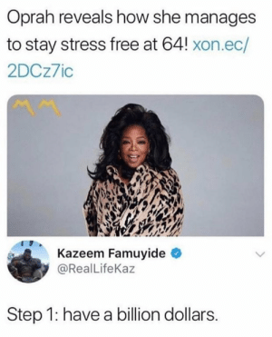 Memes, Oprah Winfrey, and Reddit: Oprah reveals how she manages  to stay stress free at 64! xon.ec/  2DCz7io  Kazeem Famuyide  @RealLifeKaz  Step 1: have a billion dollars memecage:  Why didn't i think of that before ¡its so simple!