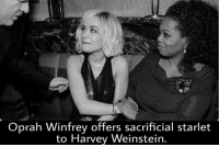 (GC) lol: Oprah Winfrey offers sacrificial starlet  to Harvey Weinstein. (GC) lol