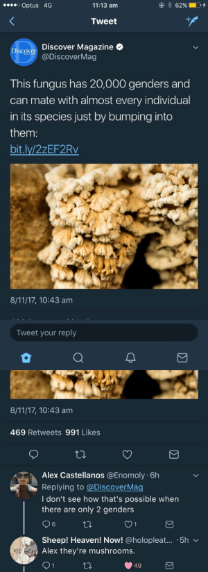 "kellyclowers: ""Alex they're mushrooms"" is the new ""Harold they're lesbians"": Optus 4G  11:13 am  Tweet  Discover Magazine <  @DiscoverMag  Discov  This fungus has 20,000 genders and  can mate with almost every individual  in its species just by bumping into  them:  bit.lv/2zEF2Rv  8/11/17, 10:43 am  Tweet your reply   8/11/17, 10:43 am  469 Retweets 991 Likes  Alex Castellanos @Enomoly 6h  Replying to @Discover Mac  I don't see how that's possible when  there are only 2 genders  Sheep! Heaven! Now! @holopleat... .5h v  Alex they're mushrooms  4200  49 kellyclowers: ""Alex they're mushrooms"" is the new ""Harold they're lesbians"""