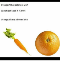 Love, Memes, and Orange: Orange: What color are we?  Carrot: Let's call it Carrot  Orange: I have a better idea i love these memes GOODNIGHT