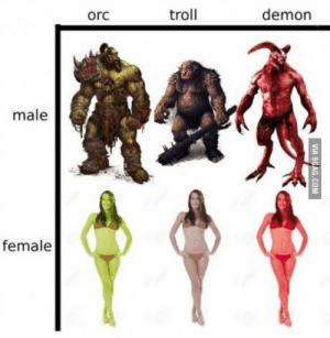 Every mmorpg ever: orc  troll  demon  male  female Every mmorpg ever