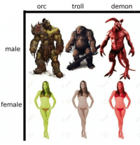 Troll, Time, and Demon: orc  troll  demon  male  female Every time https://t.co/ZVGz0XxcBR