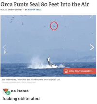 This is me to a bitch in my science class ≪sam≫: Orca Punts Seal 8o Feet Into the Air  OCT 28, 2015 09:20 AM ET BY JENNIFER VIEGAS  VIEW RELATED GALLERY  The airborne seal, which was just forced into the air by an orca's tail.  YOUTUBE SCREENGRABIROLL FOCUS PRODUCTIONS  no-items  fucking obliterated This is me to a bitch in my science class ≪sam≫