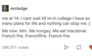 College, Life, and Tumblr: orcbulge  me at 14: I cant wait till im in college I have  many plans for life and nothing can stop me :)  Me now: Mm. Me hungey. Me eat macdonal.  French frie. Frenchffrie. French frie.  296,971 notes Yummy yummy