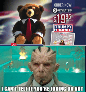 Confirmed real. Still don't believe it.: ORDER NOW!  2 PAYMENTS OF  $1995  plus s&h  TRUMPY  *BEAR *  TRUMPY  Cificane ot uiing  CALL  I CAN'T TELL IF YOU'RE JOKING  OR NOT Confirmed real. Still don't believe it.