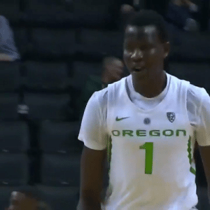 Memes, Nba, and Shoes: OREGOn Bol Bol NBA Combine measurements!  7'2 1/4 with shoes 208 pounds 7.1% body fat 7'7 wingspan 9'7 1/2 standing reach  📊 @DraftExpress 📹 @GoDucks    https://t.co/XvxzBxawPL