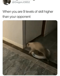 Girl Memes, You, and Impressive: @OregonJOBS2  When you are 9 levels of skill higher  than your opponent Impressive 😏