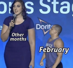 Months, Other, and Sta: ores  Sta  Dorit  Other  months  Februarv