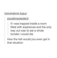 Tumblr, Fuck, and Hell: oreveralone-lyguy  pizzaforpresident:  if i was trapped inside a room  filled with explosives and the only  way out was to eat a whole  tomato i would die  How the hell would you even get in  that situation I HAVENT POSTED ALL DAY FUCK