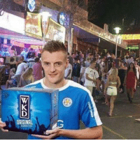 Memes, Party, and Shakespeare: ORIBINA Leicester boss Craig Shakespeare says Jamie Vardy once had to be talked out of quitting as he wanted to work in Ibiza as a party rep... -- 💰- @ODDSbible 🐶 - @PRETTY52 📸 - @LENSbible 📖 - @FACTSbible 😂 - @LADbible ⚽ - @SPORTbible 🍔 - @FOODbible 🕹 - @GAMINGbible