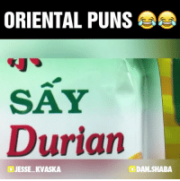 New pun video! 10 w- @john_nonny pun joke puns me instamood memes instafunny punny hilarious instagood jokes meme video funny life lol oriental laugh instadaily happy smile positive: ORIENTAL PUNS  SAY  Durian  JESSE KVASKA  DAN,SHABA New pun video! 10 w- @john_nonny pun joke puns me instamood memes instafunny punny hilarious instagood jokes meme video funny life lol oriental laugh instadaily happy smile positive