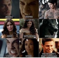 😂😂😂😃 OMG tvd4ever tvdmiisticfalls delenaisendgame delenaforever bonnie tyler katherine klaus elena damon stefan jeremy mattdonovan ian paul cadiceaccola nina: ORIGINALS  GHOSTS  HYBRIDS  UAMPIRES  delenaistruelove I ig  DOPPELGANGERS  WITCHES  HUNTERS  WEREWOLUES  AND THEN THERE S:  MATT DOnOUAO 😂😂😂😃 OMG tvd4ever tvdmiisticfalls delenaisendgame delenaforever bonnie tyler katherine klaus elena damon stefan jeremy mattdonovan ian paul cadiceaccola nina