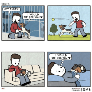 r/aww doesn't like comics. Hope you guys enjoy this as much as I did :) credit: Hey Buddy Comics: ORIGINS  HEY BUDDY!  I WOULD  DIE FOR YOU  | WOULD  DIE  FOR YOU  #10  HEYBUDDY  COMICS  Oft r/aww doesn't like comics. Hope you guys enjoy this as much as I did :) credit: Hey Buddy Comics