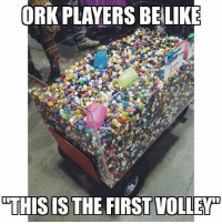 Memes, Shameless, and Dice: ORK PLAYERS BELIKE  THIS IS THE FIRST VOLLEY As an Ork player, can confirm. I have a tub this size for just dice. Who else has a horde of dice for games?  The Malkavian Harpy Shamelessly Stolen from Spikey Bits.