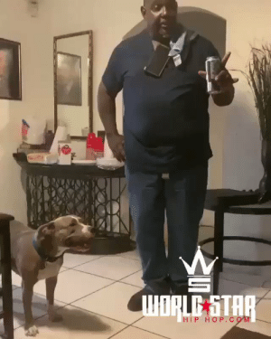 Never call those you love outside their name...🐶😂💯 @BlindedByBeaute https://t.co/xMhOUlbkTa: ORLE STAR  HIP HOP. C oM Never call those you love outside their name...🐶😂💯 @BlindedByBeaute https://t.co/xMhOUlbkTa