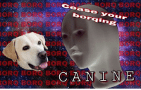 "Reddit, Com, and Canine: ORO BORO  Cease your  boraing  ORO BORO BOR  ORQ BORO B  BORO  BORO  BORQ  BOR  CA N E  I N <p>[<a href=""https://www.reddit.com/r/surrealmemes/comments/8f8jo3/cease_canine/"">Src</a>]</p>"