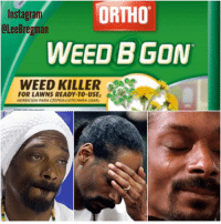 ortho: ORTHO  Instagram  OLee Bregman  WEED B GON  WEED KILLER  A  FOR LAWNS READY TO USE