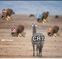 Cristiano watching Real Madrid this season like... (Credits: @teem80199573 ) https://t.co/FoucX8J7ql: ORTIVO  CR7  fTrollFootball Cristiano watching Real Madrid this season like... (Credits: @teem80199573 ) https://t.co/FoucX8J7ql