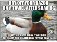 Advice, Tumblr, and Animal: ORY OFF YOUR RAZOF  ONATOWELAFTER SHAVING  LETTING WATER SIT ON IT WILL DULL  THE BLADES MUCH FASTER THAN CUTTING SOME HAIR advice-animal:  Those blades aren't cheap