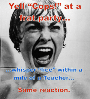 Teacher, Lice, and Yes: os at a  whisper lice within a  mile of a Teacher  0  0  ...  Same reaction YES!!!
