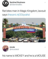"Bitch, Tumblr, and Business: OS  Sentinel Business  @OSentinelBiz  BUSINESS  Rat bites man in Magic Kingdom, lawsuit  says thesent.nl/2Gqvahd  Dreams Colne 、Irie  Right Lane   nicole  @nicoolest  his name is MICKEY and he is a MOUSE <p>And bitch had is coming </p><figure class=""tmblr-full"" data-orig-height=""793"" data-orig-width=""750""><img src=""https://78.media.tumblr.com/7985437578a64b7b80784489fb4cc1b0/tumblr_inline_p6bo1xhhoX1rw09tq_500.jpg"" data-orig-height=""793"" data-orig-width=""750""/></figure>"