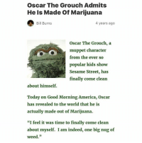 "America, Sesame Street, and Weed: Oscar The Grouch Admits  He Is Made Of Marijuana  Bill Burns  4 years ago  Oscar The Grouch, a  muppet character  from the ever so  popular kids show  Sesame Street, has  finally come clean  about himself.  Today on Good Morning America, Oscar  has revealed to the world that he is  actually made out of Marijuana.  ""I feel it was time to finally come clean  about myself. I am indeed, one big nug of  weed."" knew it"