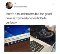 Dogs, Memes, and Music: @oscarewilde  there's a thunderstorm but the good  news is my headphones fit Bella  perfectly  5 Hours of Anxiety Prevention Music for Dogs and  and Storms-Problem Solved https://t.co/XVKf8SB56k