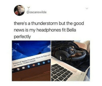Dogs, Music, and News: @oscarewilde  there's a thunderstorm but the good  news is my headphones fit Bella  perfectly  5 Hours of Anxiety Prevention Music for Dogs and  and Storms-Problem Solved <p>Good owner</p>