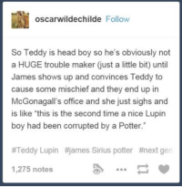 "Memes, Sirius, and Corruption: oscarwildechilde Follow  So Teddy is head boy so he's obviously not  a HUGE trouble maker just a little bit) until  James shows up and convinces Teddy to  cause some mischief and they end up in  McGonagall's office and she just sighs and  is like ""this is the second time a nice Lupin  boy had been corrupted by a Potter.""  #Teddy Lupin #james Sirius potter #next gen  1,275 notes ~Dobby"