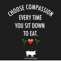 Time, League, and Compass: OSE COMPASS  EVERY TIME  YOU SIT DOWN  TO EAT  the humane league #ChooseCompassion