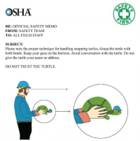 DO NOT TRUST THE TURTLE: OSHA  AF  IRS  RE: OFFICIAL SAFETY MEMO  FROM: SAFETY TEAM  TO: ALL FIELD STAFF  SUBJECT:  Please note the proper technique for handling snapping turtles. Grasp the turtle with  both hands. Keep your gaze on the horizon. Avoid conversation with the turtle. Do not  give the turtle your name or address.  DO NOT TRUST THE TURTLE DO NOT TRUST THE TURTLE
