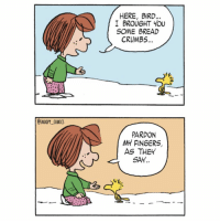 ➡️➡️SWIPE FOR MORE ➡️➡️ Remember to feed the birds during the winter snoopy comics cartoon snoopycomics peppermintpatty woodstock: OSNOOPY. COMICS  HERE, BIRD...  I BROUGHT YOU  SOME BREAD  CRUMBS  PARDON  MY FINGERS,  AS THEY  SAY.. ➡️➡️SWIPE FOR MORE ➡️➡️ Remember to feed the birds during the winter snoopy comics cartoon snoopycomics peppermintpatty woodstock