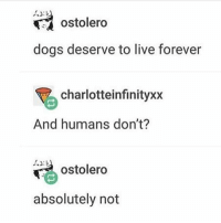 Dogs, Memes, and Forever: ostolero  dogs deserve to live forever  F charlotteinfinityxx  And humans don't?  ostolero  absolutely not nope nope nope - Max textpost textposts
