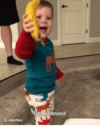 Christmas, Banana, and Best: ot abanana!  ::: newsflare This little boy has the best reaction to getting a banana for Christmas 😂🍌